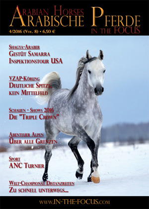 Arabische Pferde IN THE FOCUS 4/2016 (Vol. 8)