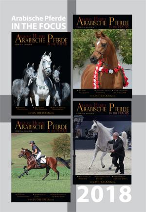 Arabische Pferde IN THE FOCUS Jahrgang 2018