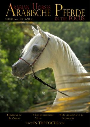 Arabische Pferde IN THE FOCUS 1/2020 (Vol. 21)