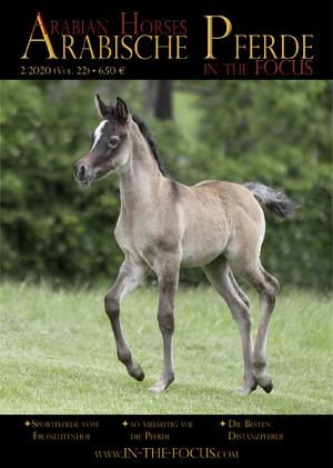 Arabische Pferde IN THE FOCUS 2/2020 (Vol. 22)