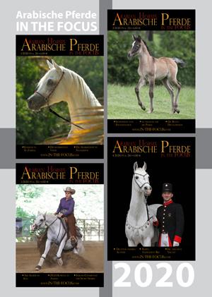 Arabische Pferde IN THE FOCUS Jahrgang 2020